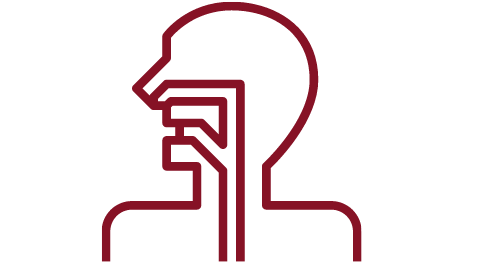 Health Systems Theory and Practice Icon